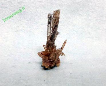 ژیپس Gypsum سلنیت Selenite
